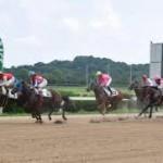 休日、佐賀競馬でボロ負け。佐賀競馬で借りれる消費者金融。